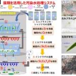 考案中の汚染水処理システム